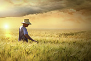 August Prints - Farmer checking his crop of wheat  Print by Sandra Cunningham