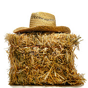 Feed Photo Framed Prints - Farmer Hat on Hay Bale Framed Print by Olivier Le Queinec