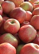 Apple Photos - Farmers Market Apples by Carol Groenen
