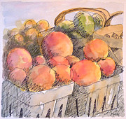 Fruit Market Drawings Posters - Farmers Market Poster by Beth Kreutz