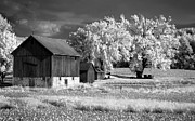Old Barns Photo Prints - Farming Print by Bob Nardi