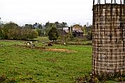 Tennessee Barn Prints - Farmland Print by Douglas Barnett