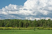 Urban Farm Posters - Farmland, Forests And Clouds On Sunny Day Poster by Denise Taylor