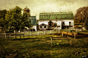 Fences Prints - Farmland in Intercourse - Pennsylvania Print by Madeline Ellis