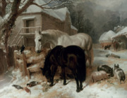 Snow Horses Framed Prints - Farmyard Scene Framed Print by John Frederick Herring Snr