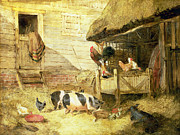 Cockerel Framed Prints - Farmyard Scene Framed Print by John Frederick Herring Snr