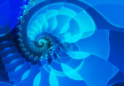 Spirals Prints - Fascination in Blue Print by Jutta Maria Pusl