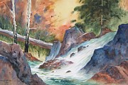 Trout Stream Landscape Framed Prints - Fast and Chilly Framed Print by Bob Cox
