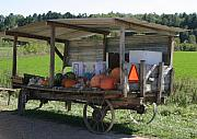 Farmstand Metal Prints - Fast food Metal Print by Bjorn Sjogren
