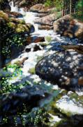 Colorado Mountain Stream Paintings - Fast Stream in Colorado by John Lautermilch
