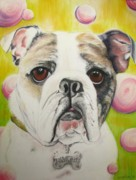 Dog Print Pastels Framed Prints - Fat Rose Framed Print by Michelle Hayden-Marsan