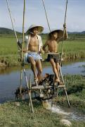 Straw Hats Photos - Father And Son Irrigate Rice Fields by J. Baylor Roberts