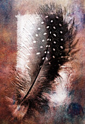 Digital Art Pyrography Prints - Feather Print by Mauro Celotti