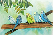 Yellow Beak Paintings - Feathered Friends by Terri Mills
