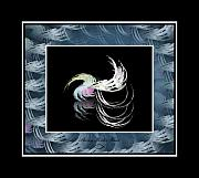Sherry Holder Hunt Posters - Feathery Fluff Poster by Sherry Holder Hunt