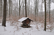 Schoenbuch Posters - Feed box in winterly forest Poster by Matthias Hauser