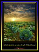 Inspirational Poster Framed Prints - Feed the Soul Framed Print by Phil Koch