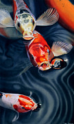 Koi Painting Originals - Feeding Frenzy by Denny Bond