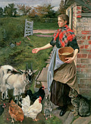 Farm Girl Posters - Feeding the Chickens Poster by William Edward Millner
