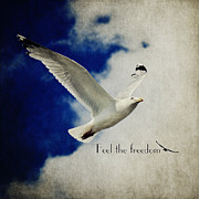 Freedom Mixed Media - Feel the freedom by Angela Doelling AD DESIGN Photo and PhotoArt