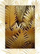 Fronds Framed Prints - Feeling Nature Framed Print by Holly Kempe