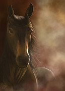 Mustang Art - Feeling the warmth by Kate Black