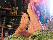YoMamaBird Rhonda - Feet