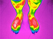 Two Feet Posters - Feet, Thermogram Poster by Tony Mcconnell