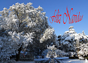 Winter Photos Framed Prints - Feliz Navidad -- Dos Framed Print by Skip Willits