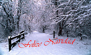 Winter Photos Framed Prints - Feliz Navidad -- Uno Framed Print by Skip Willits