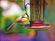 Bird-feeder Prints - Female Cardinal Pastelation Print by Bill Tiepelman