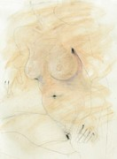 Drawing Painting Originals - Female Nude by Elizabeth Parashis