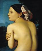 Brunette Painting Prints - Female Nude Print by Ingres