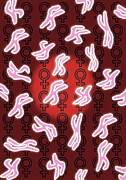 Sex Symbol Photos - Female Sex Chromosomes by David Nicholls