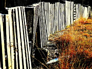 Old Roadway Metal Prints - Fence Abstract Metal Print by Joe JAKE Pratt