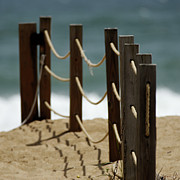 Greeting Card Photos - Fence Along the Beach by Julie Niemela