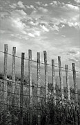 Beach. Black And White Posters - Fence At Jones Beach State Park. New York Poster by Gary Koutsoubis