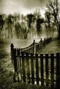 Winter Prints Posters - Fence In Fog Poster by Steven Ainsworth