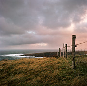Overcast Prints - Fence In Ireland Print by Danielle D. Hughson