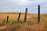 Barn Pen And Ink Photo Posters - Fence Line Country Road Poster by Athena Mckinzie