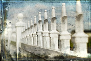 Fence Photo Prints - Fence Line II Print by Rebecca Cozart