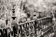 Fence Framed Prints - Fence Line Framed Print by Rebecca Cozart