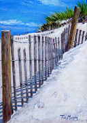 Cape Cod Paintings - Fence Shadows by Tish Murphy