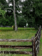 Split Rail Fence Digital Art Framed Prints - Fenced In Field Framed Print by EricaMaxine  Price