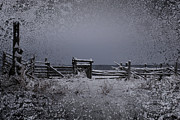 Old Greeting Cards Photos - Fenced In by Larysa Luciw