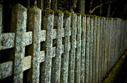 Old Wooden Fence Prints - Fenced In Print by Sebastian Musial