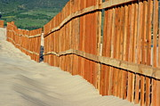 Sand Fences Prints - Fenced sand dunes at the beach in Tarifa Print by Sami Sarkis