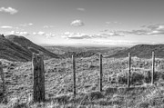 Old And New Prints - Fenceline Print by Les Cunliffe