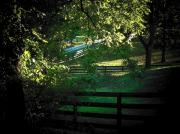 Shenandoah Valley Posters - Fences on the Farm Poster by Joyce  Kimble Smith
