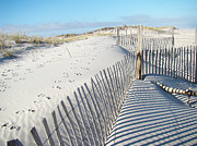 Sand Fences Acrylic Prints - Fences Shadows and Sand Dunes Acrylic Print by Carol Senske
